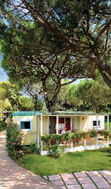 Camping Jesolo International